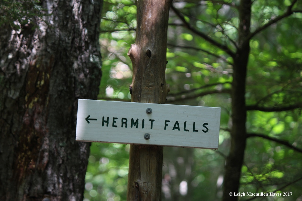 b-hermit fall sign