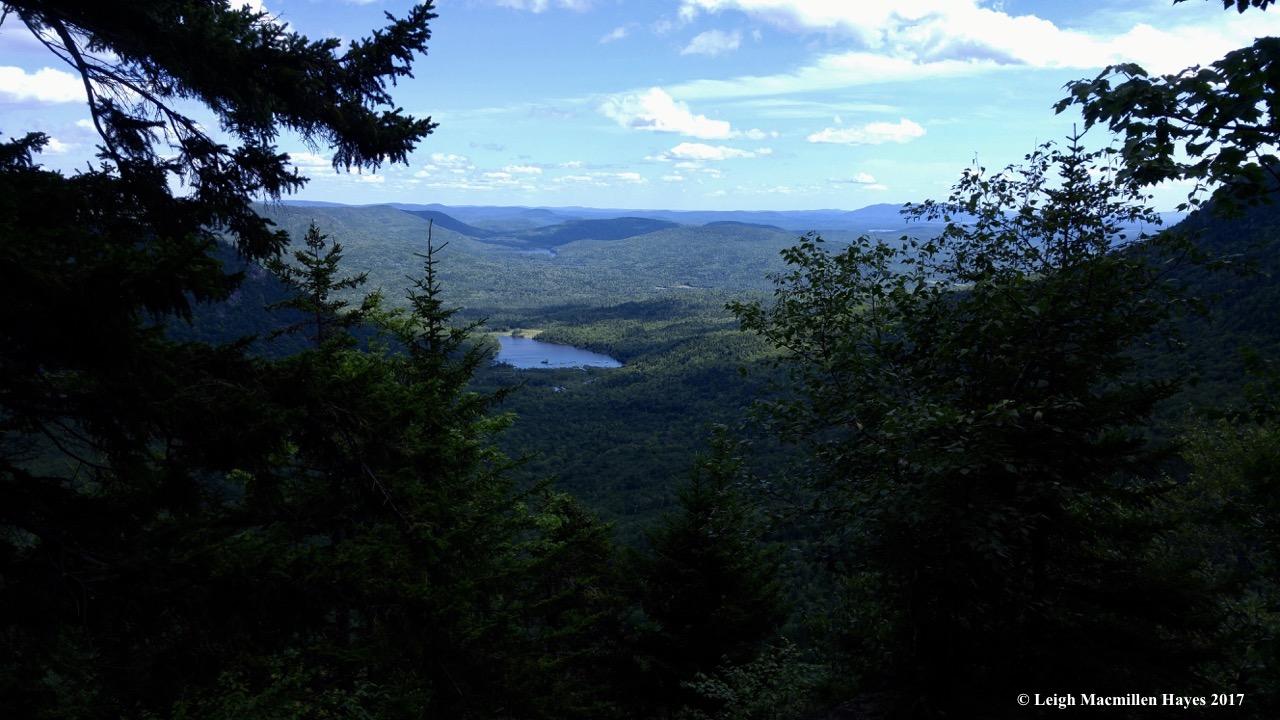 b1-summit 1 (1)