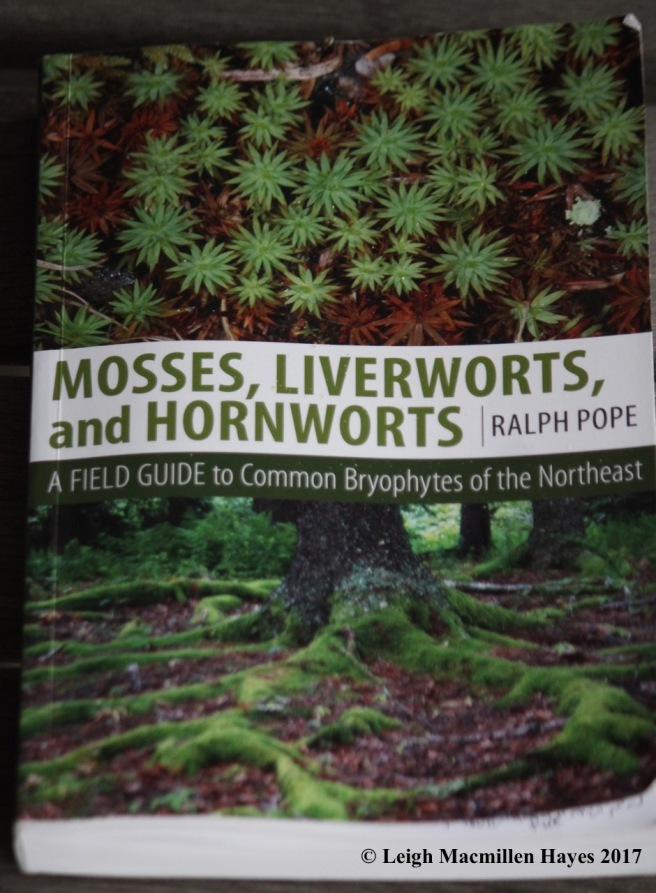 m-mosses book