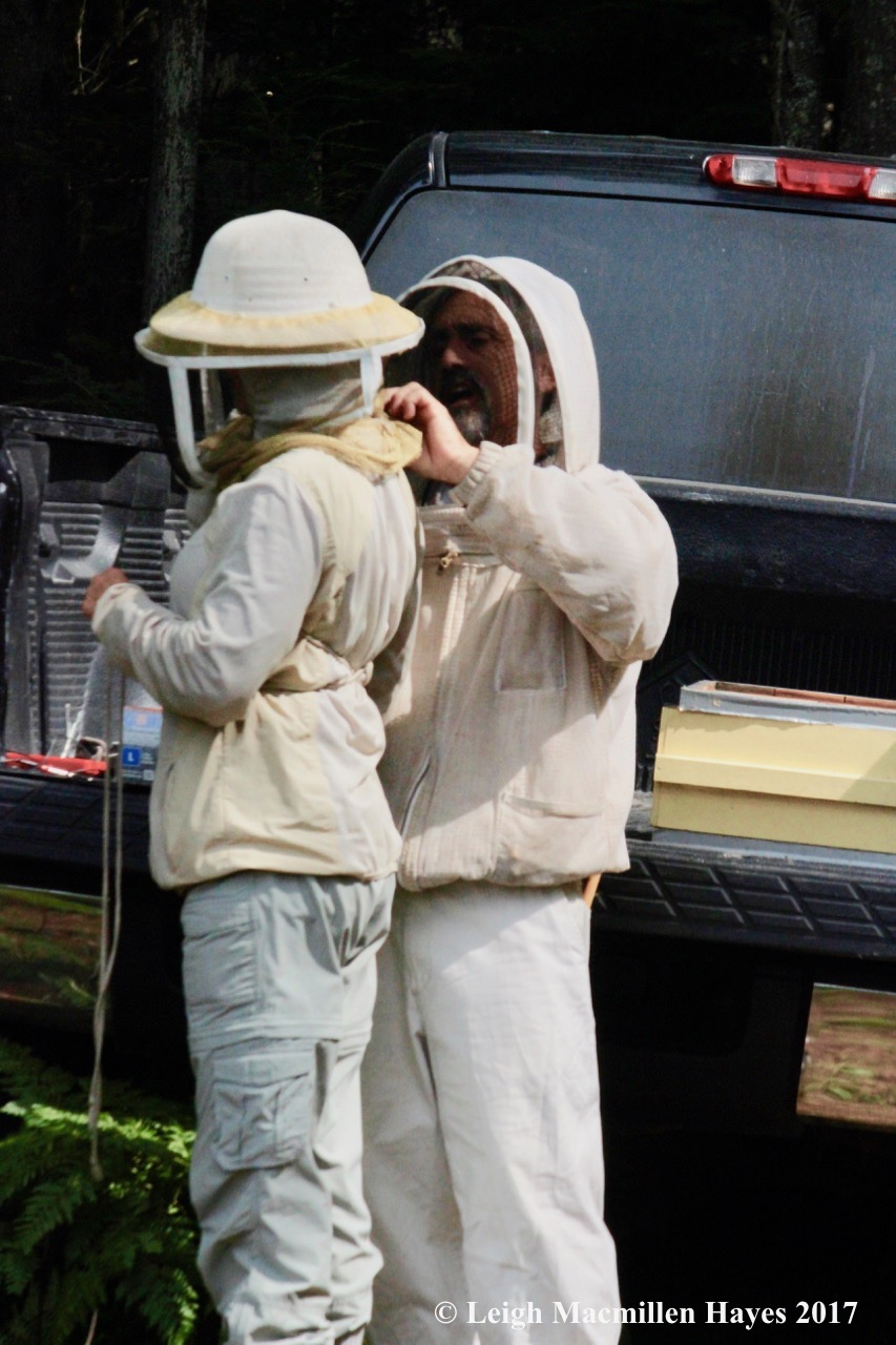 w-dressing like a beekeeper