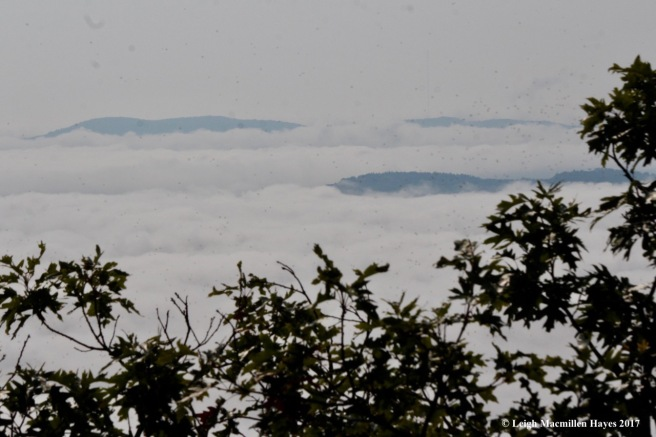 l16-mountain islands 1