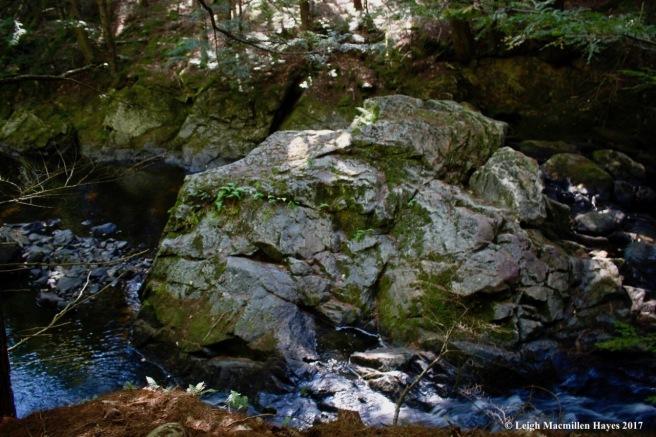 o-boulder in river