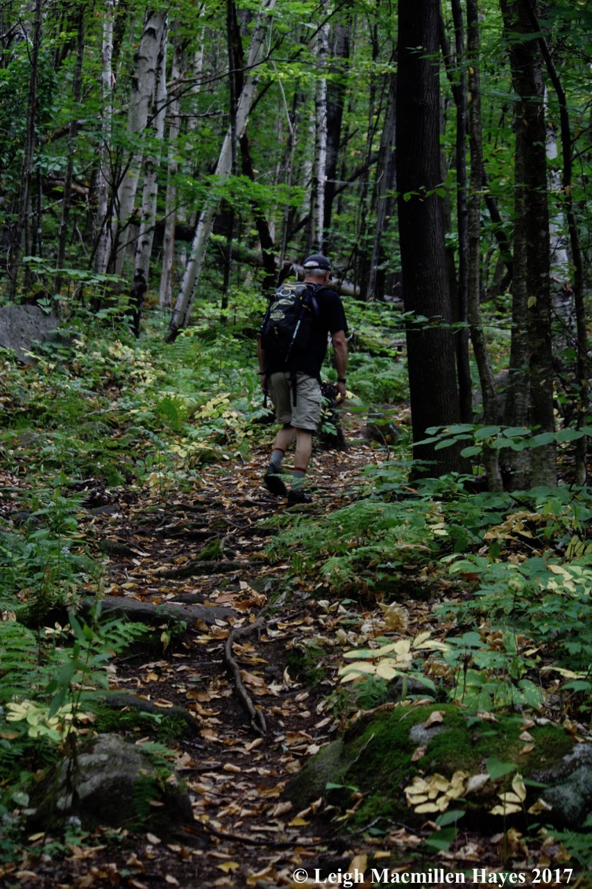 p16-hiking upward