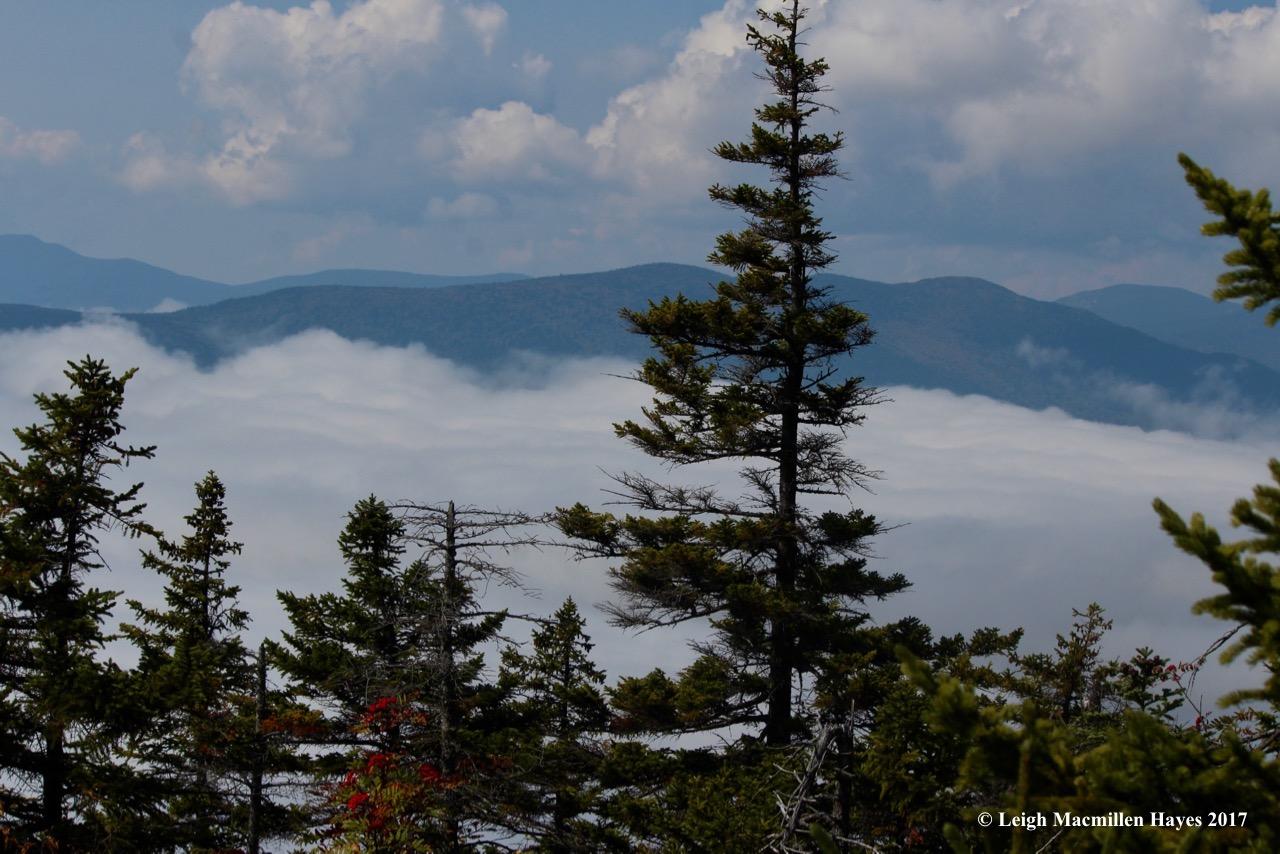 p28-summit view 1