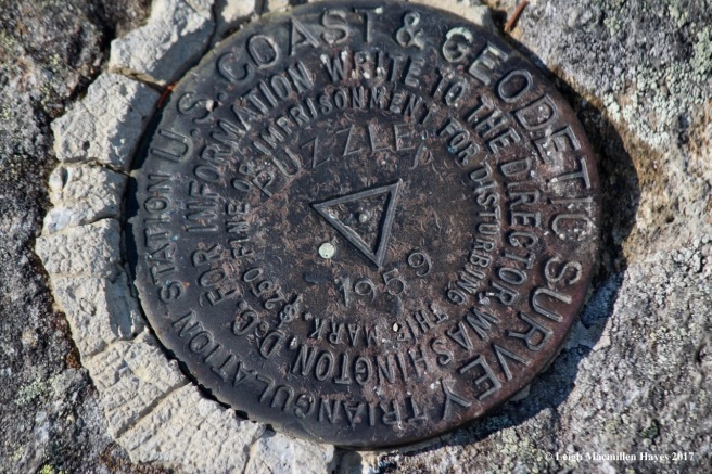 p36-first survey mark