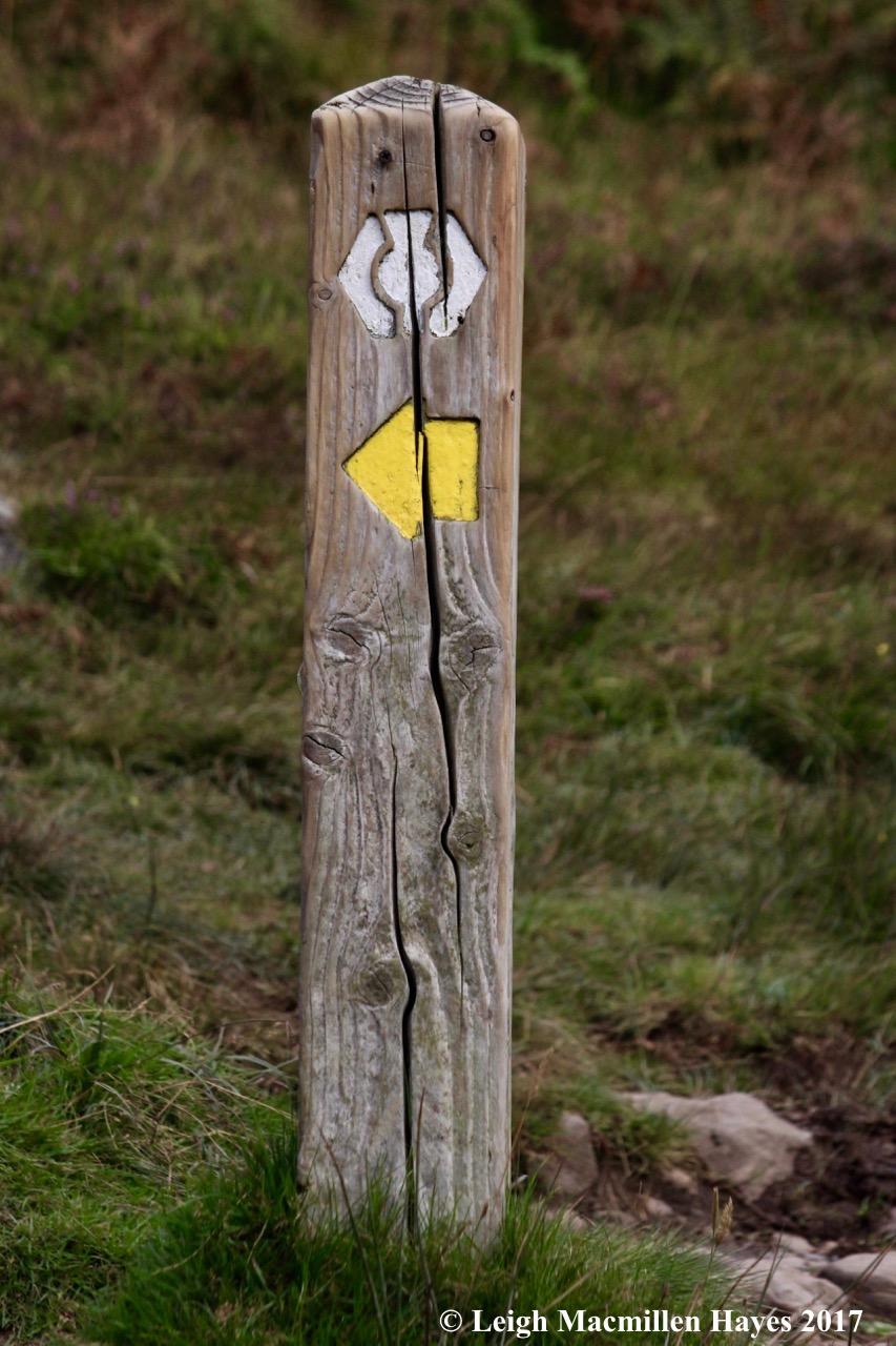 s-C Hill trail marker