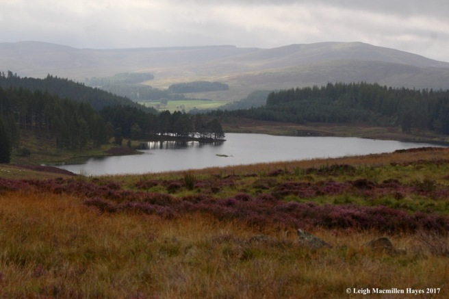 s-Cateran loch, Sept 5