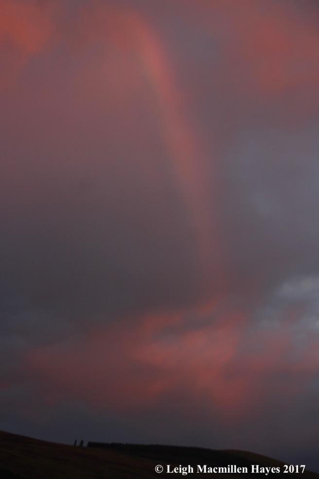 s-rainbow