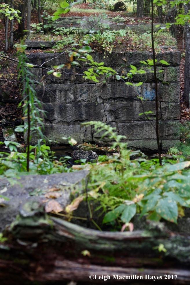 s2-5th site-Narrow Gauge trestle bridge