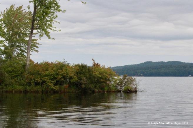 s39-Stevens Brook outlet into Long Lake