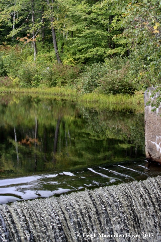 s40-10th site, CMP dam