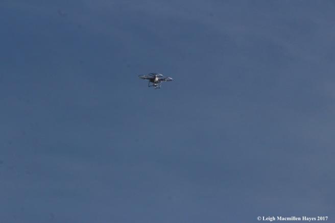 u12-drone