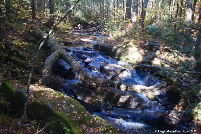k-Province Brook 2