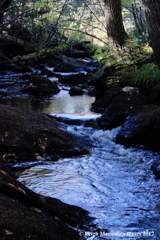 k-Province Brook 3
