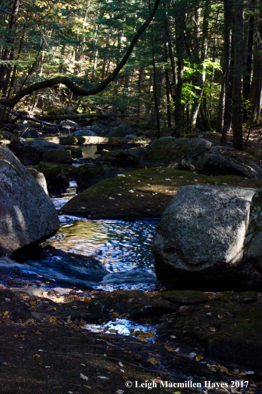 k-Province Brook 4