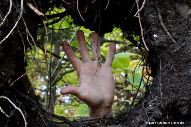 m-photo frame hand