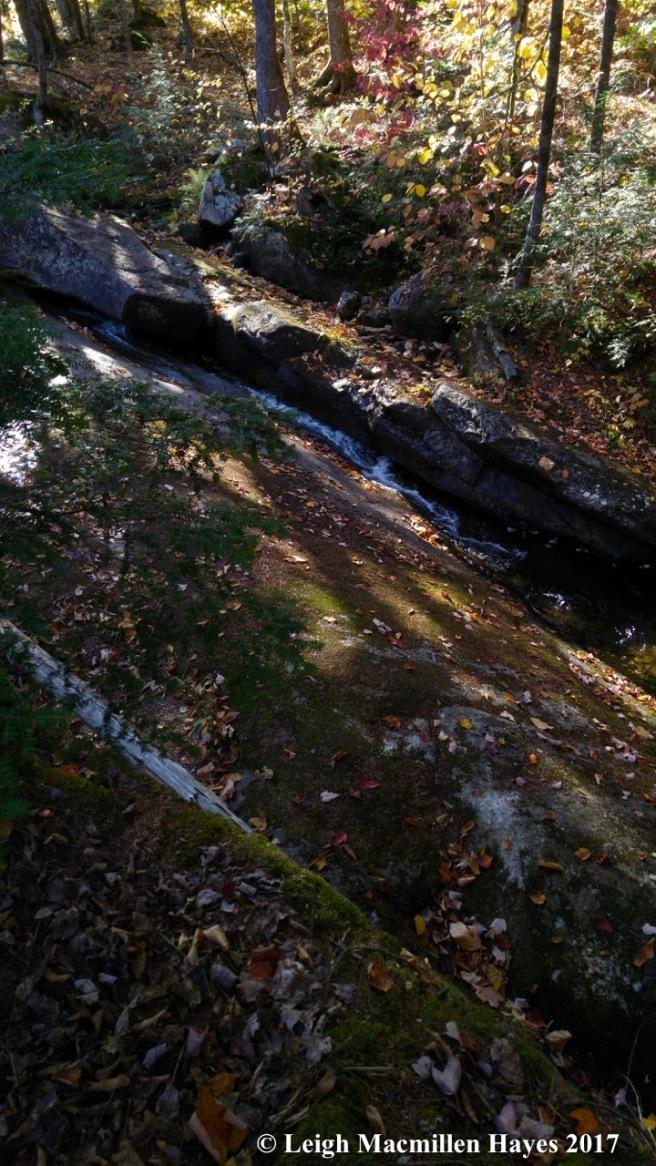 m-weeks brook between the rocks