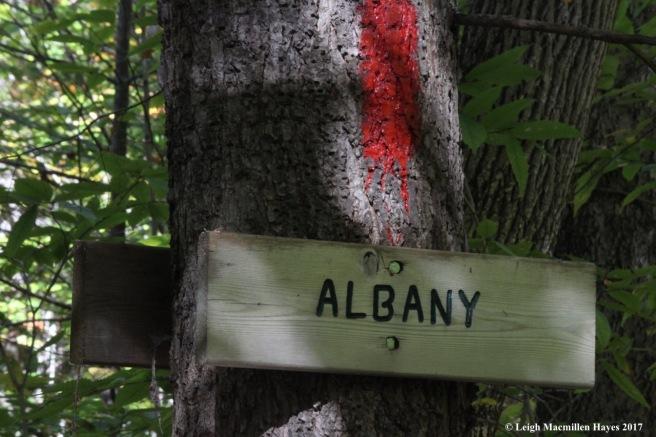 s-Albany
