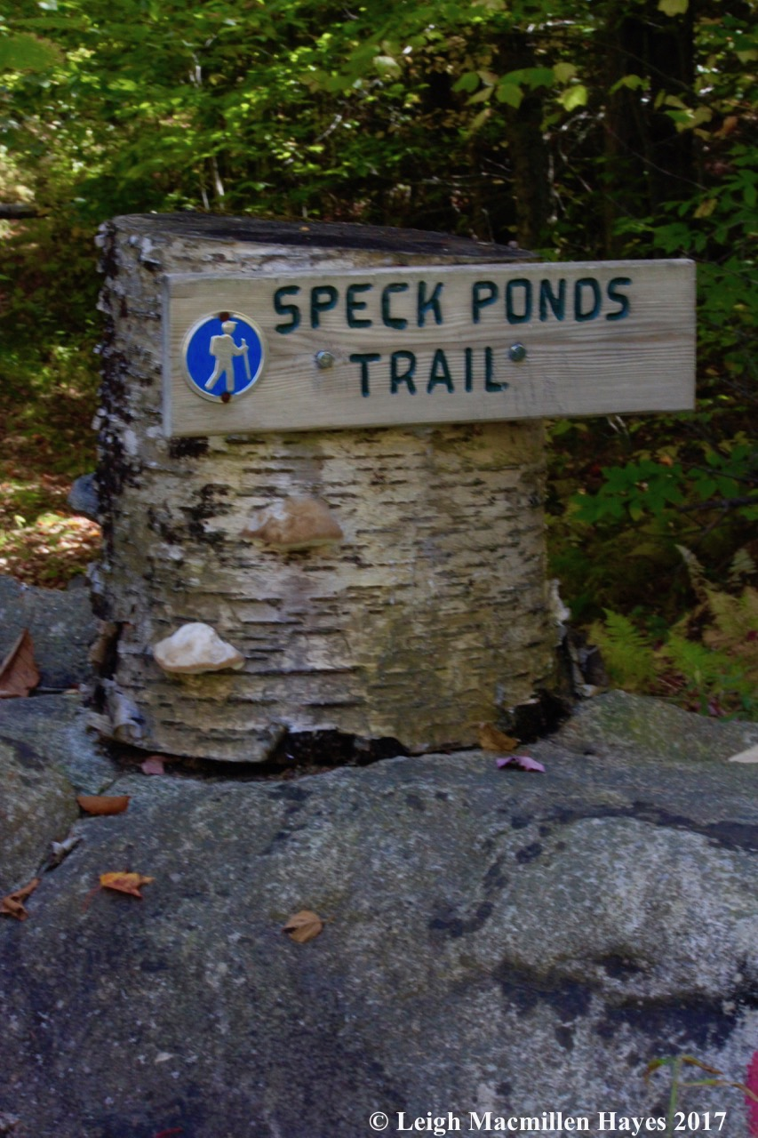 s-Speck Ponds trail sign