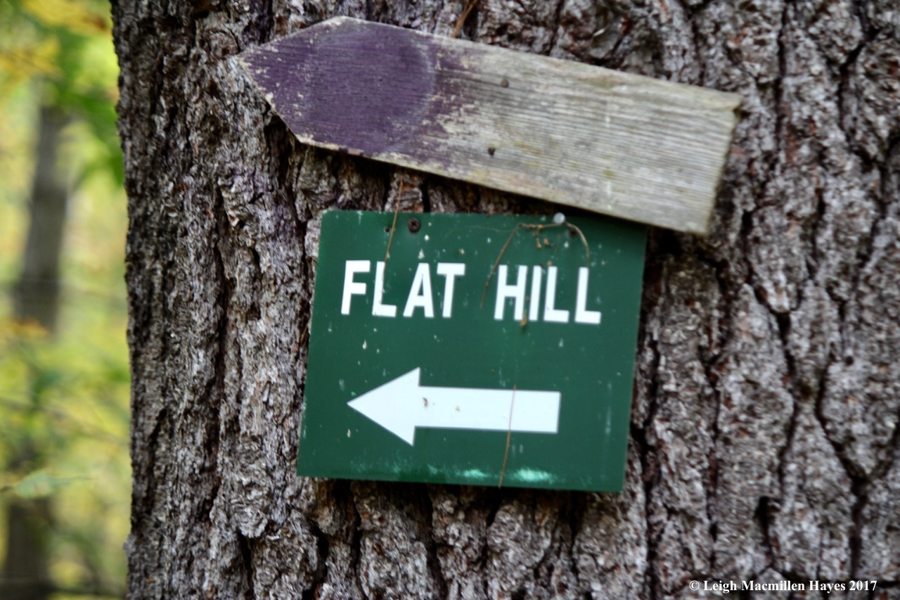 t-flat hill sign--oxymoron
