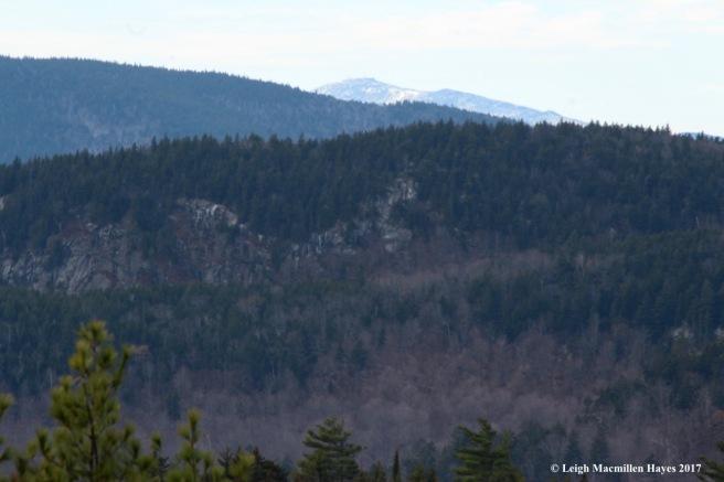 a20-Mt Washington