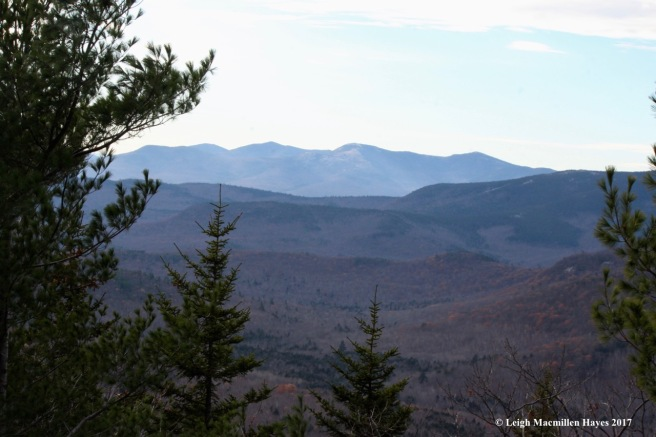 a24--views of balds from other trail