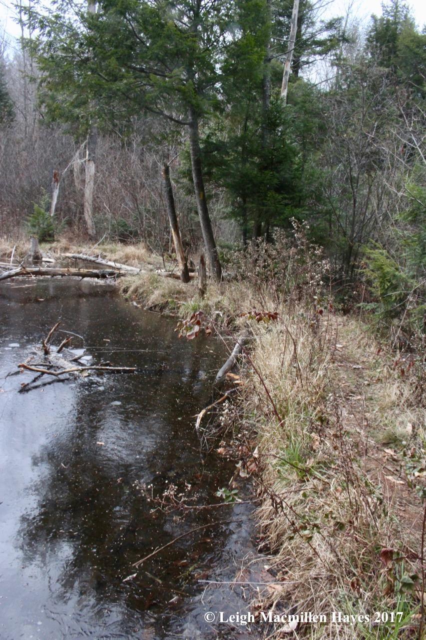 a3-dam crossing