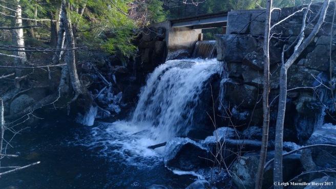 a32-dam at Patte Marsh