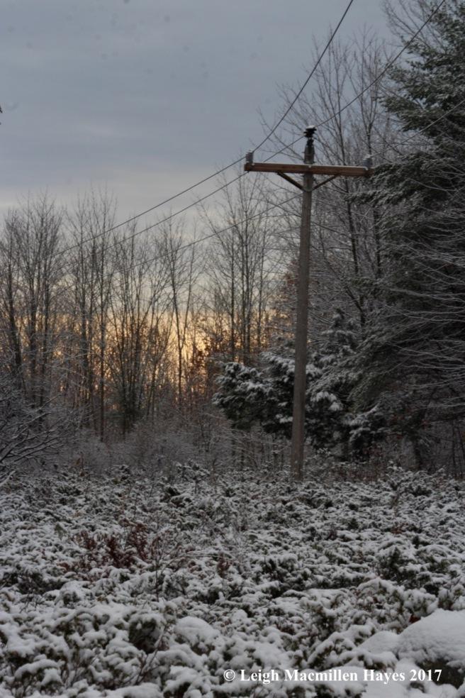 m-morning light