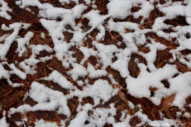 m-snow art 1