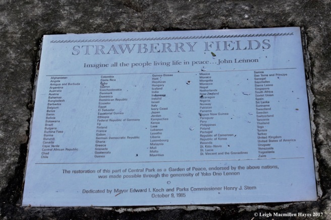 n-strawberry fields forever