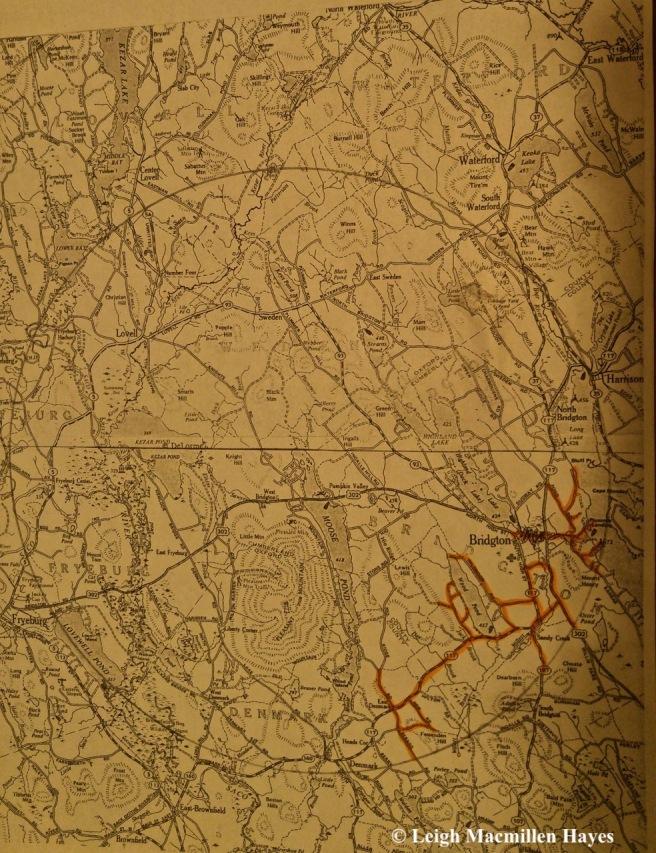 c1-map