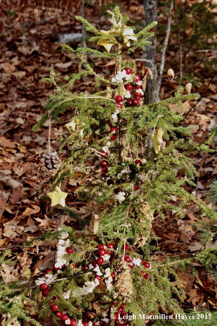 f-Christmas Tree