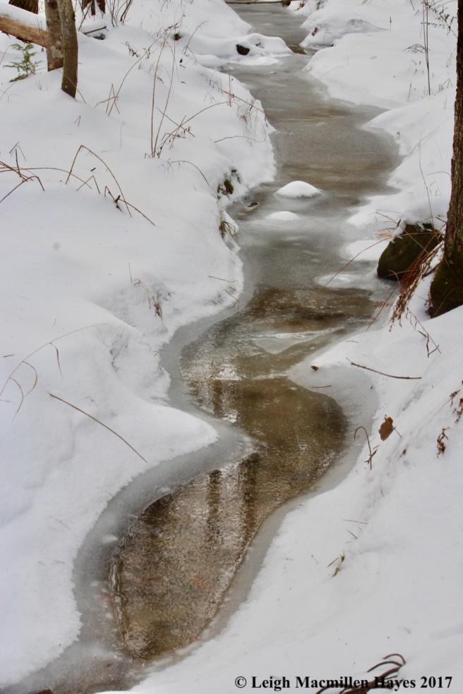 p-stream curves