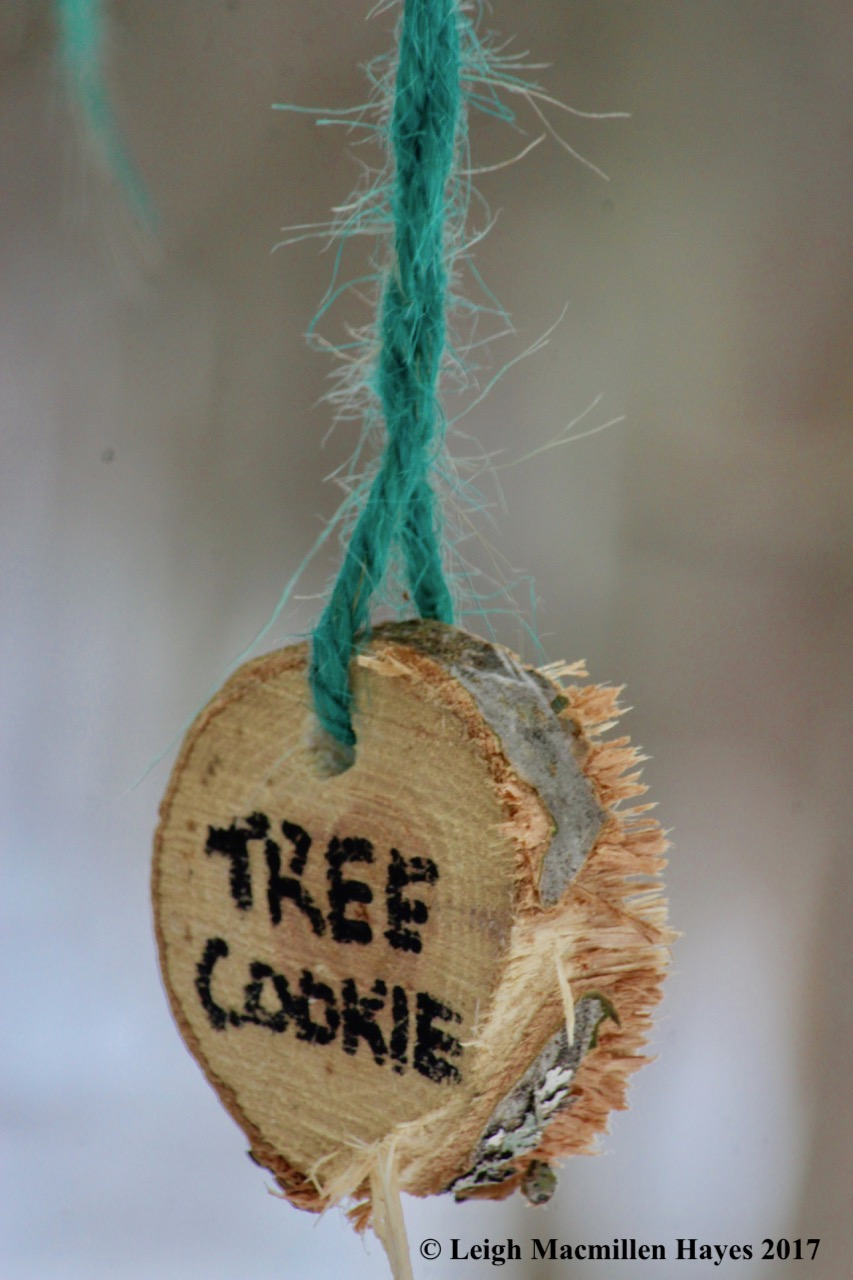 p-tree cookie