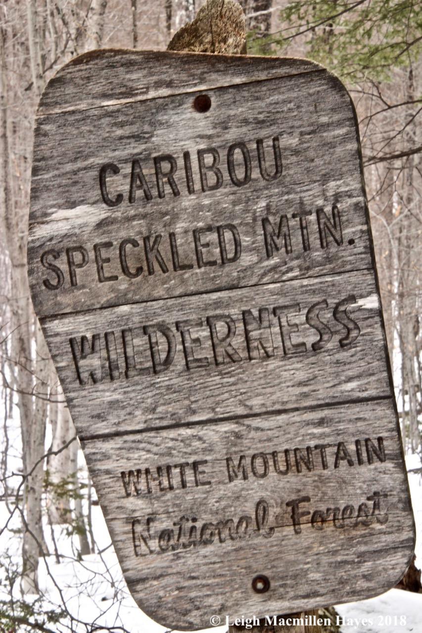 b16-Caribou sign