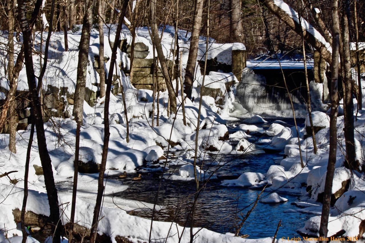 f-Heald Pond dam