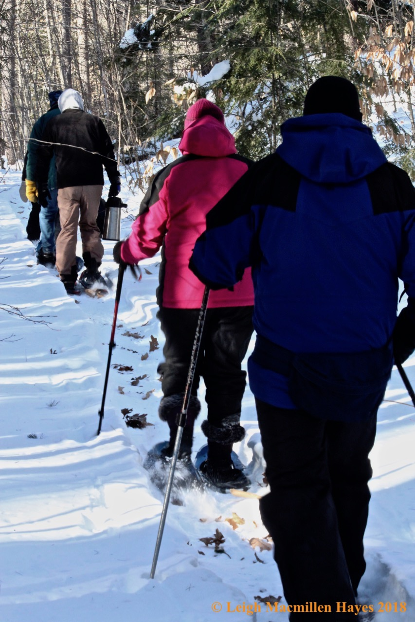 f-snowshoe journey up Whiting Hill Trail