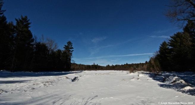 r10-tracks across the brook