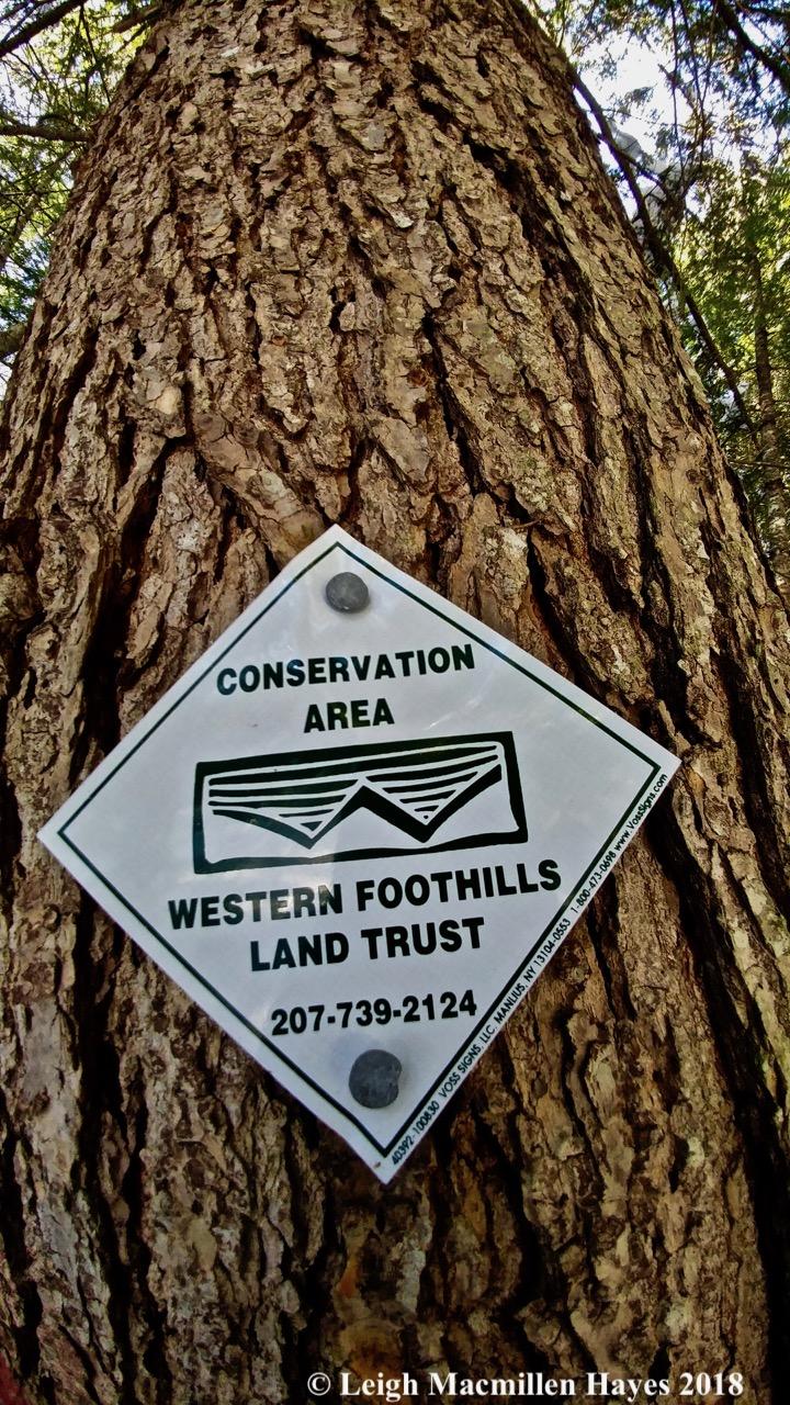 r5-western foothills sign