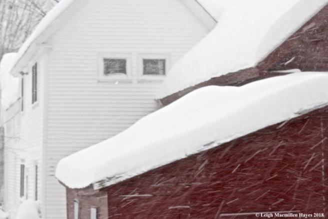 w-blizzard of 2018