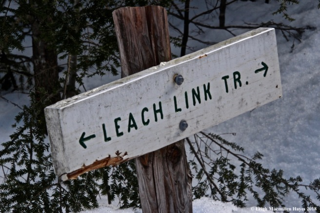 e21-Leach Link Trail sign