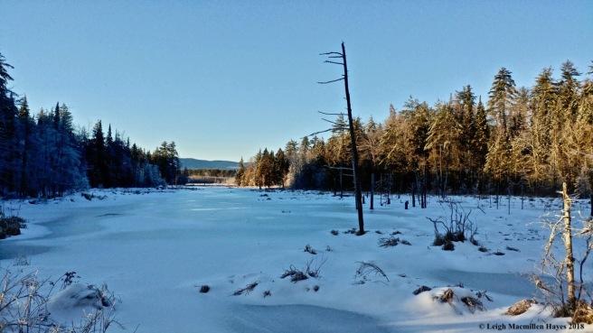 l-Long Meadow Brook 2