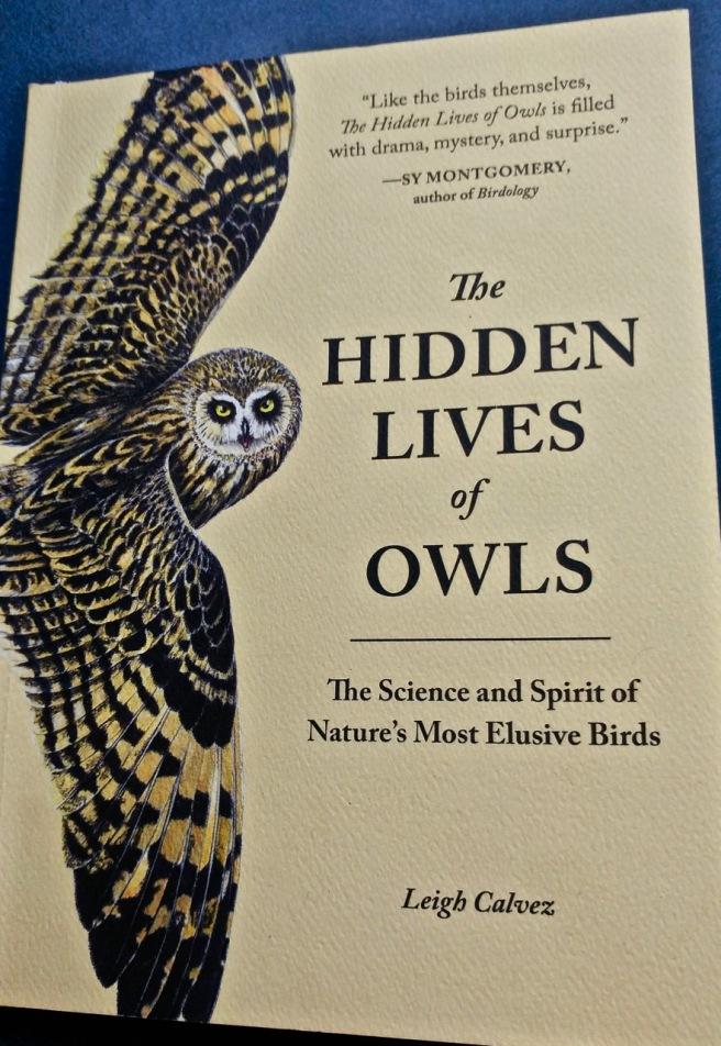 o-The Hidden Lives of Owls