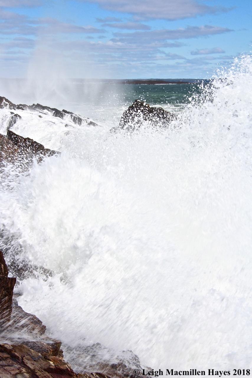 a17-surf's up