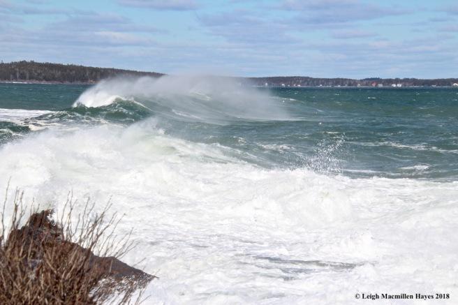 a25-ocean spray
