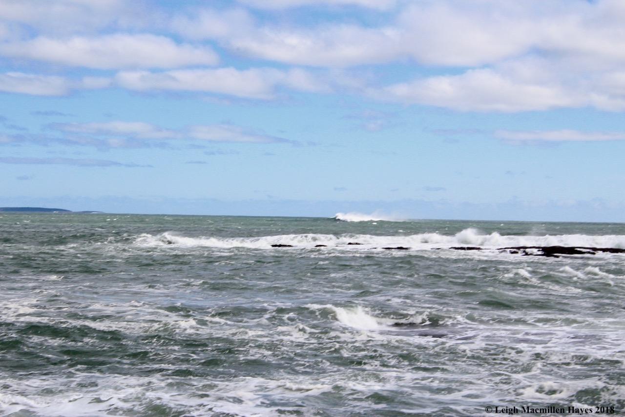 a3-surfs up 1