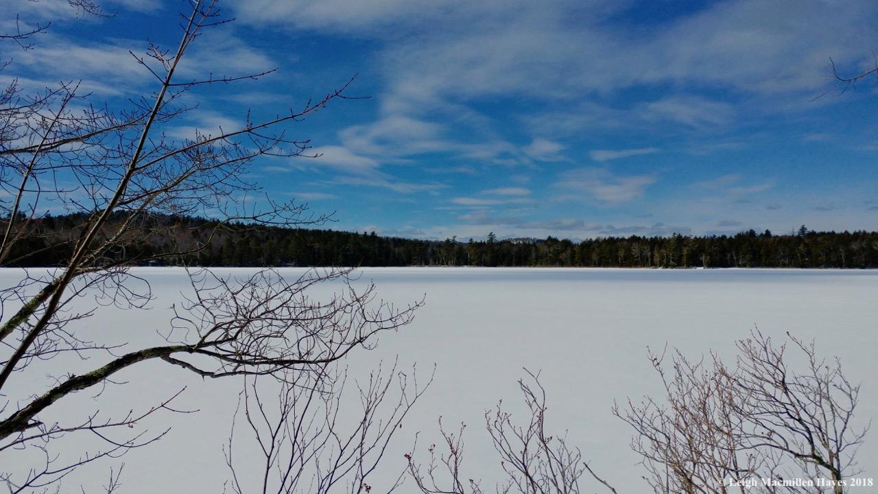 c9-Browns Pond