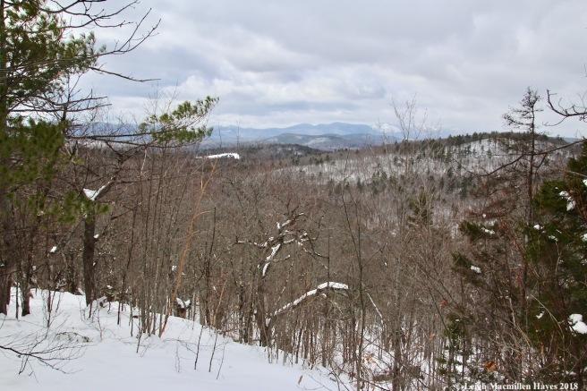 f10-flat hill view