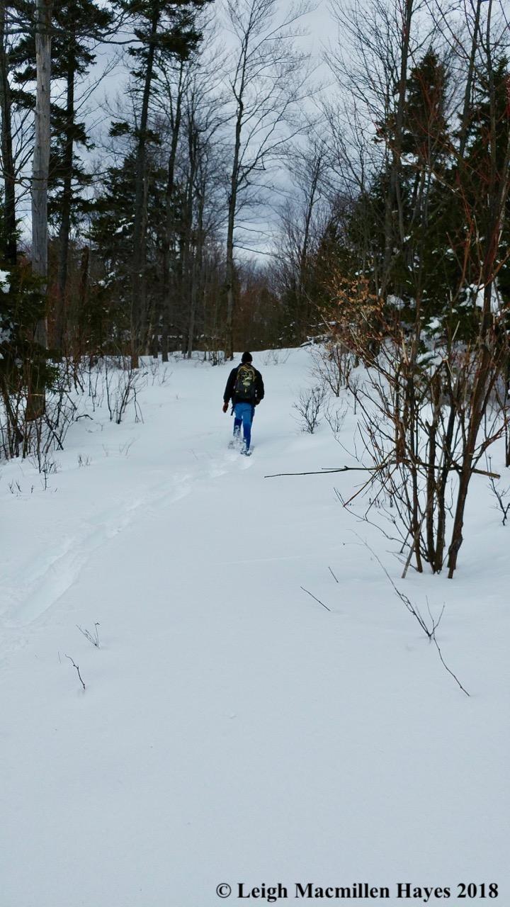 l24-hiking down